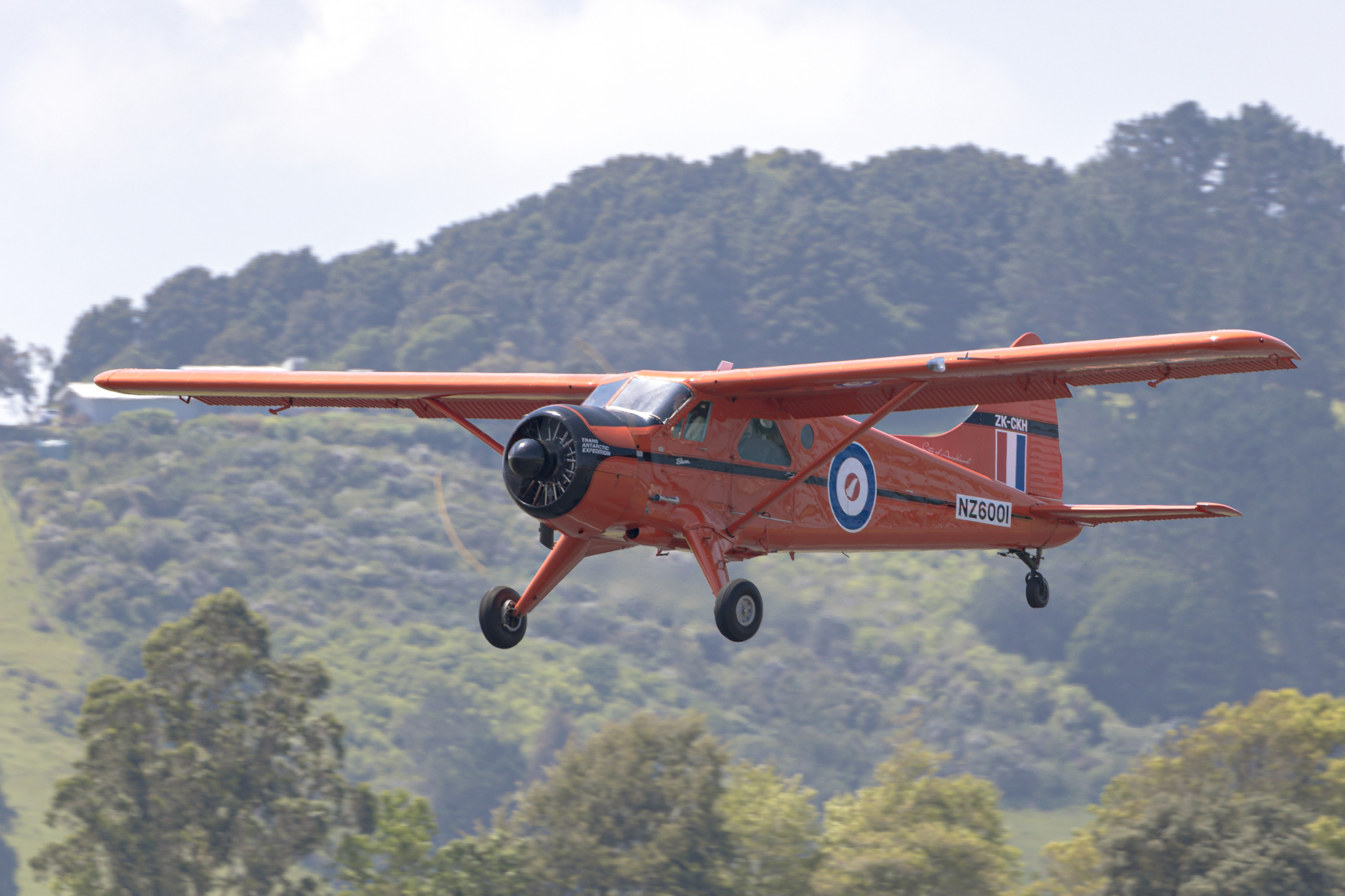 DHC-2 Beaver - NZ Warbirds